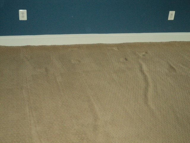 Premature Wall To Wall Carpet Buckling Can Be Avoided